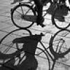 Ciclo