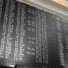 Green economy in Borsa: le aziende quotate crescono secondo VedoGreen