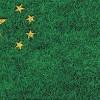 La green economy cinese protagonista del Forum QualEnergia