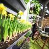 Expocasa a Torino dal 7 al 15 marzo: protagonisti sostenibilità e vita all'aperto