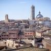 """All'Università di Siena torna l'insegnamento """"Sostenibilità"""""""