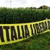 OGM, l'Italia conferma la messa al bando