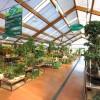 Viridea e Neudorff: corsi gratuiti per coltivare l'orto in modo naturale