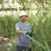 Inquinanti emergenti e resistenza agli antibiotici: le prossime sfide ambientali