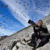 Artico, Inuit e cambiamenti climatici. Una mostra fotografica a Venezia