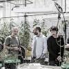 Botanica: musica e scienza per raccontare la vita delle piante