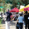 """Quattro passi in Fiera a Treviso per parlare di """"Futuro al lavoro"""""""