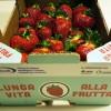 """Con il packaging """"Attivo"""" di Bestack le fragole si conservano di più"""