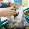 Sacchetti plastica: dal 1° gennaio 2018 scattano le nuove restrizioni