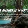 Giornata Mondiale dell'Acqua: in Brasile il più grande forum mondiale sulla sicurezza idrica