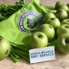 """""""Green Apple Days"""": GBC Italia entra nelle scuole per parlare di sostenibilità ambientale"""