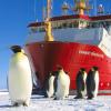 MIUR: l'Italia avrà la sua nave rompighiaccio per studiare i mari polari