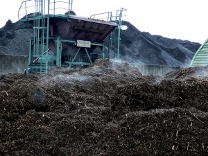 Biomasse, Courtesy of Nils Bremer, Flickr.com