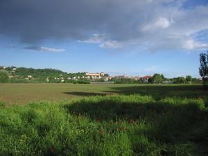L'area Le Vallere, sede del Parco del Po, Courtesy of Parco Fluviale del Po Torinese