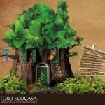 Courtesy of Toro Ecocasa