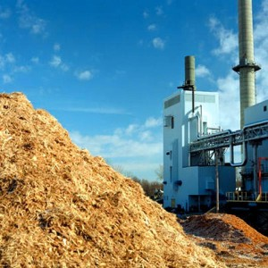 biomasse, Courtesy of images.com