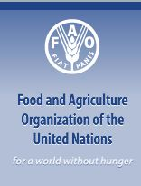 fao, Courtesy of fao.org