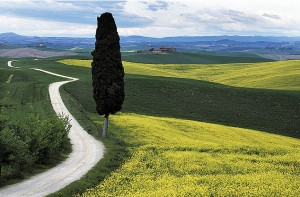paesaggio, Courtesy of d.carradori, Flickr.com
