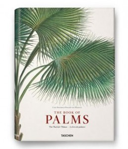 Il libro delle palme