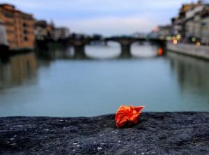 Toscana, Courtesy of gicol, Flickr.com