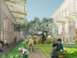 Verso un ecosistema urbano, IED