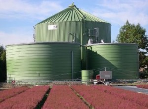 biogas, courtesy of ambientevita.it