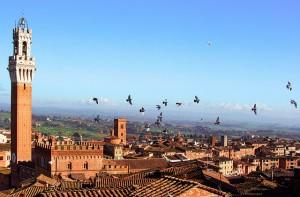 volando su Siena, Courtesy of Gret@Lorenz, Flickr.com