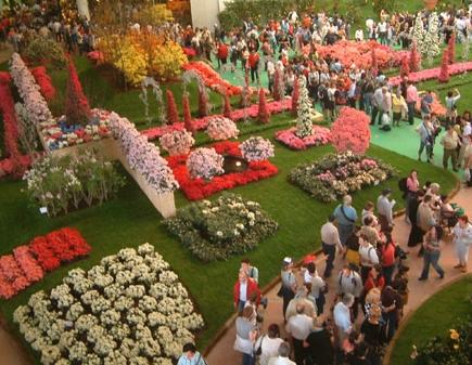 Brescia protagonista alla 10 edizione di euroflora for Vivai genova