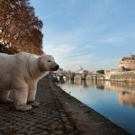 COP21: Polar Bear in RomeUn orso polare a Roma
