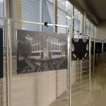 Alcuni scatti della mostra di Stefano Barattini, Foto di Andrea Gandiglio per Greenews.info